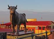 bully-185x135